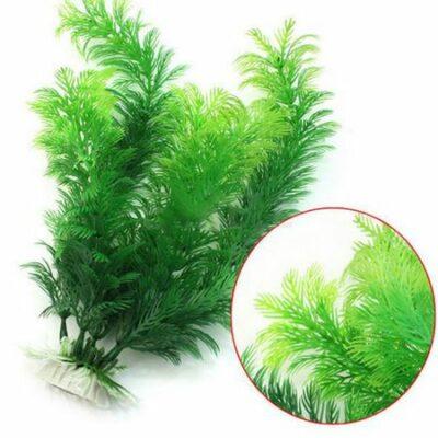 Διακοσμητικό φυτό ενυδρείου 30cm πυκνό λεπτομερής φύλλωμα  - Pteridaceae PDA30